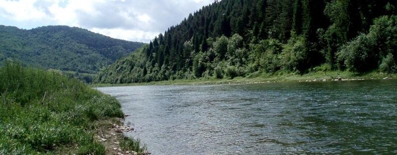 Рафтинг по реке Стрый (Стрий)